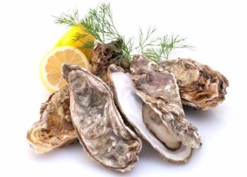 Оптово-розничная торговля морепродуктов
