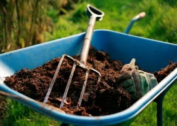 Доставка плодородного грунта, чернозема
