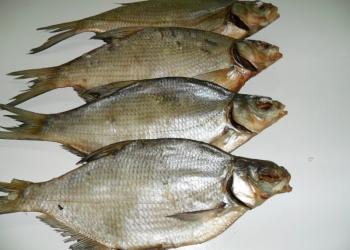 Цимлянская рыбы