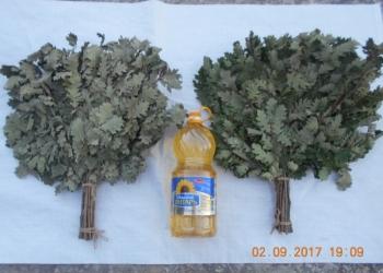 Веники банные дубовые от производителя