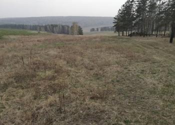 Земельный участок 7,6 га в д. Усть-Куда Иркутского района , поле Пильное
