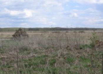 Сдам в аренду возможно с правом выкупа 112,8 гектаров земли.