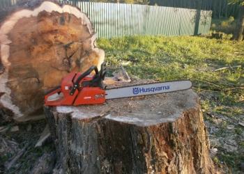 Кронирование, обрезка и удаление деревьев в Тульской области.
