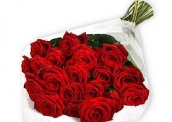 Цветы Розы, Тюльпаны
