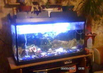 продам аквариум 200 литров с подставкой.