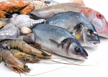 Рыба и морепродукты от добытчиков