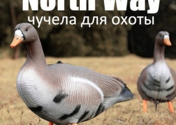 чучела Northway