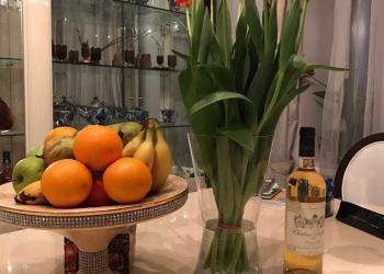 Тюльпаны оптом (осталось 200 000 шт, теплица)