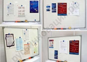 Магнитно-маркерные доски с доставкой в Свердловскую область по выгодным ценам
