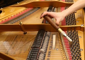Настройка и ремонт фортепиано. консультации