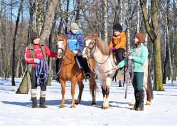 Занятия верховой ездой и прогулки на лошадях
