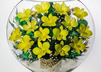 Цветы в стекле , орхидеи белые и желтые натуральные