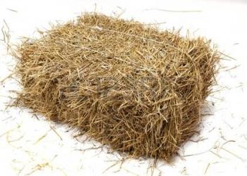 Корма для животных, оборудование фермера, зоотовары