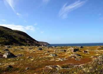 Тур в Териберку к Северному Ледовитому океану