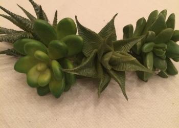 Искусственные растения для  интерьера .
