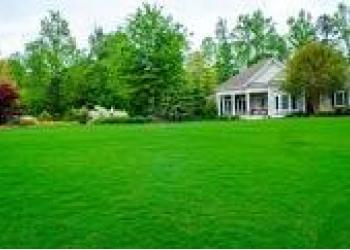 Покошу траву