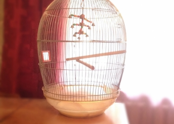 Продам клетку для птиц.