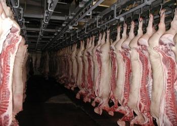 Закупка мяса промышленного забоя