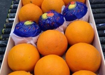 Апельсины из Испании