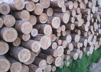 Доска обрезная хвойных пород из северного леса