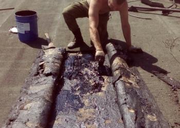 Утепление стен, герметизация межпанельных швов. Промышленные альпинисты.