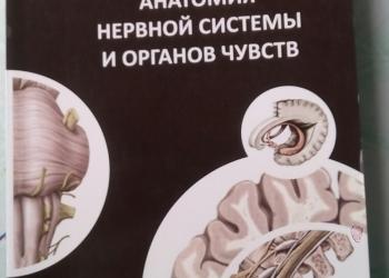 Учебные пособия по анатомии