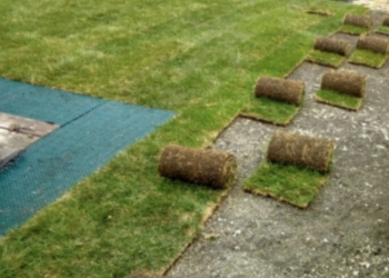 Рулонные газоны Сочи
