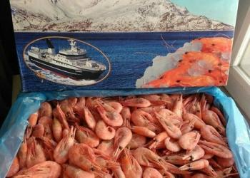 Икра, Морепродукты, Рыба