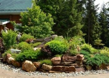 Ландшафтный дизайн и услуги садовника