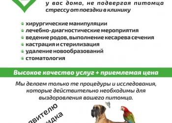 Нижегородская служба ветеринарной скорой помощи