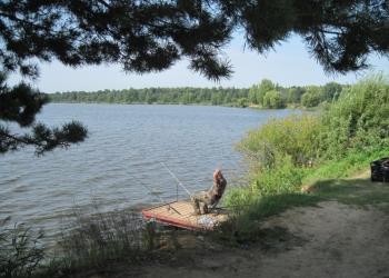 Продам 2 участка в ДНП Заповедное озеро у д. Дятлово