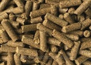 Оптовая продажа крупы зерна