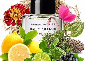 Интернет магазин элитной парфюмерии selektivmarket.ru предлагает лучшие ароматы.
