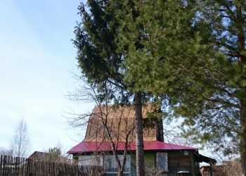 Продам дом в деревне вместе с землей