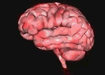 Онлайн Тренинг Головного Мозга Учащимся - акция!