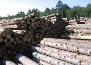 Продаем лес кругляк с Башкирии