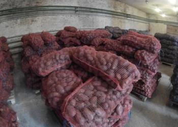Картофель оптом со склада в Перми