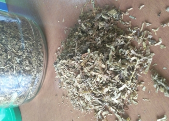 Табак сорта Вирджиния, Берли, Ориентал