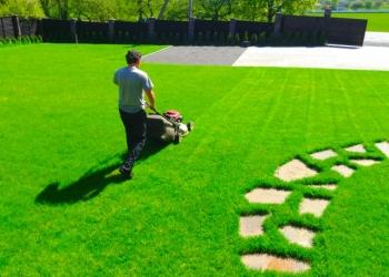 Уход, стрижка газона, аэрация, покос травы, внесение удобрений