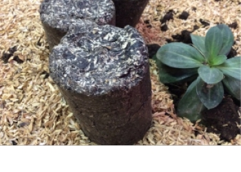 Топливные брикеты из лузги подсолнечника (за кг в рознице)