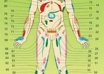 Массажно - вакуумная терапия. Баночный массаж. Хиджама.
