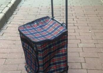 Тележка хозяйственная маленькая с сумкой