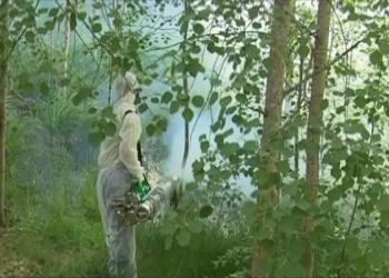Служба дезинфекции комары кроты клещи обработка Истра