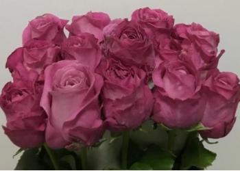 Цветы оптом и в розницу,букеты