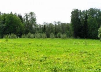 Продам два рядом земельных участка 18.76га. (сельхоз-назначения)