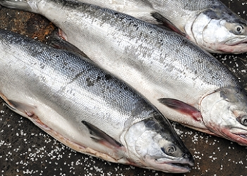 Продам рыбу кета со склада в Симферополе