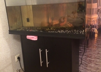 Аквариум для рыб
