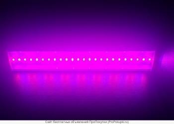 Светодиодные светильники для теплиц и агрокомплексов