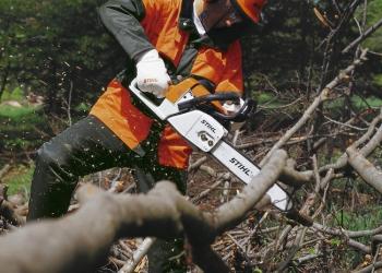 Расчистка участка. Планировка участка. Спил деревьев