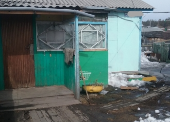 Дом 38 м2.в с.Боровиха